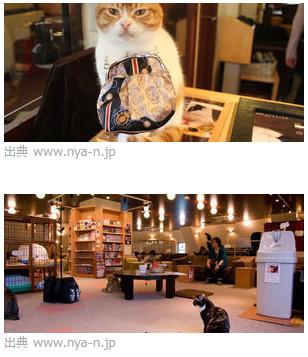 猫カフェ 猫の居る休憩所299 http://www.nya-n.jp/299/