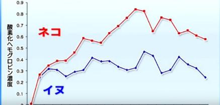 サイエンスゼロ グラフ