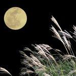 2016中秋の名月は、お月見が出来る11のレストランorクルージングで完璧