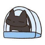 猫砂おすすめは実体験から○○で決まり!「2017最新版」