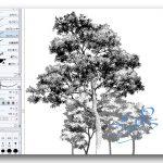 漫画の描き方、背景「木の描き方のコツをつかもう!」