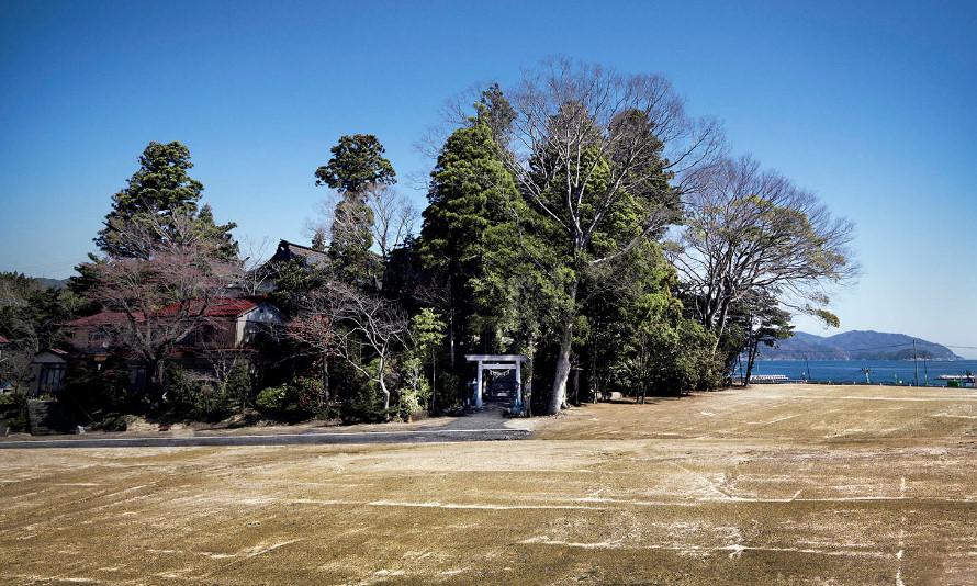 岩手県大槌町天照御祖神社の鎮守の森(東日本大震災後に撮影)写真:佐 充