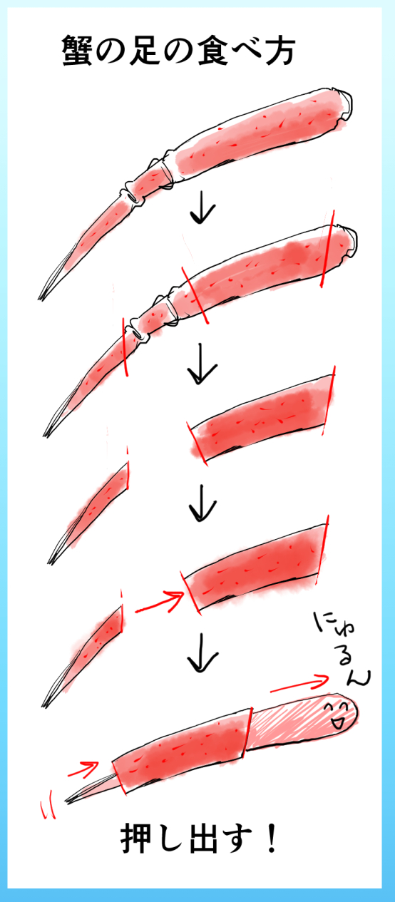 紅ズワイガニの足のイラスト